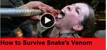 How to Survive Snake's Venom – Must wacth